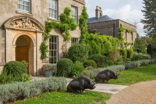 Exterior of The Pig hotel in Bath